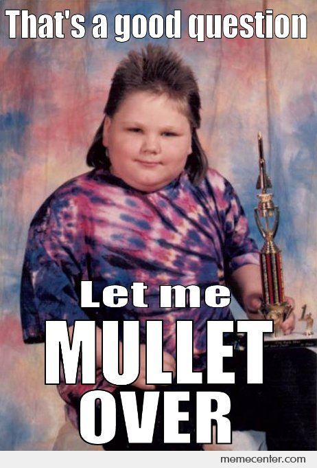 Thats-A-Good-Question-Let-Me-Mullet-Over-Funny-Meme-Image